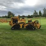 Goese Golf Green Ren. 2018 5